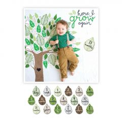 Lulujo - Baby's First Year Blanket & Cards Set